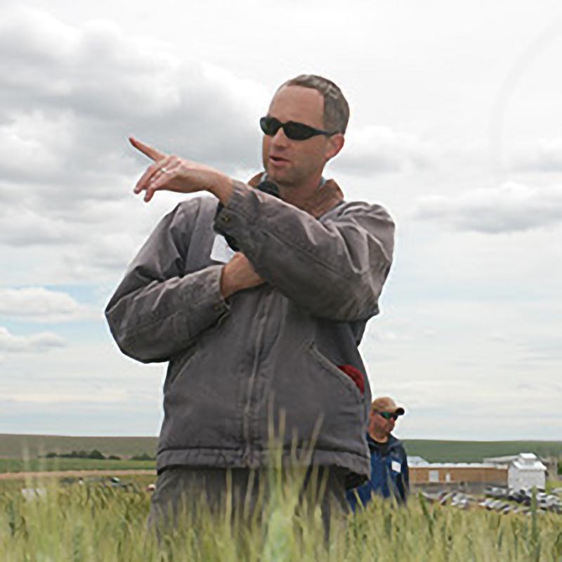 Arron Carter in a wheat field