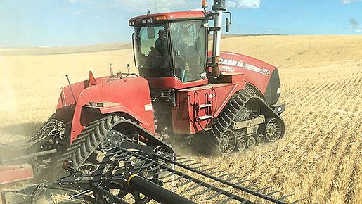 wheat_planted_in_washington