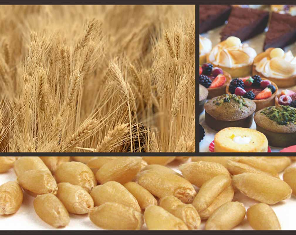 wheat stocks and kernals, and pastries