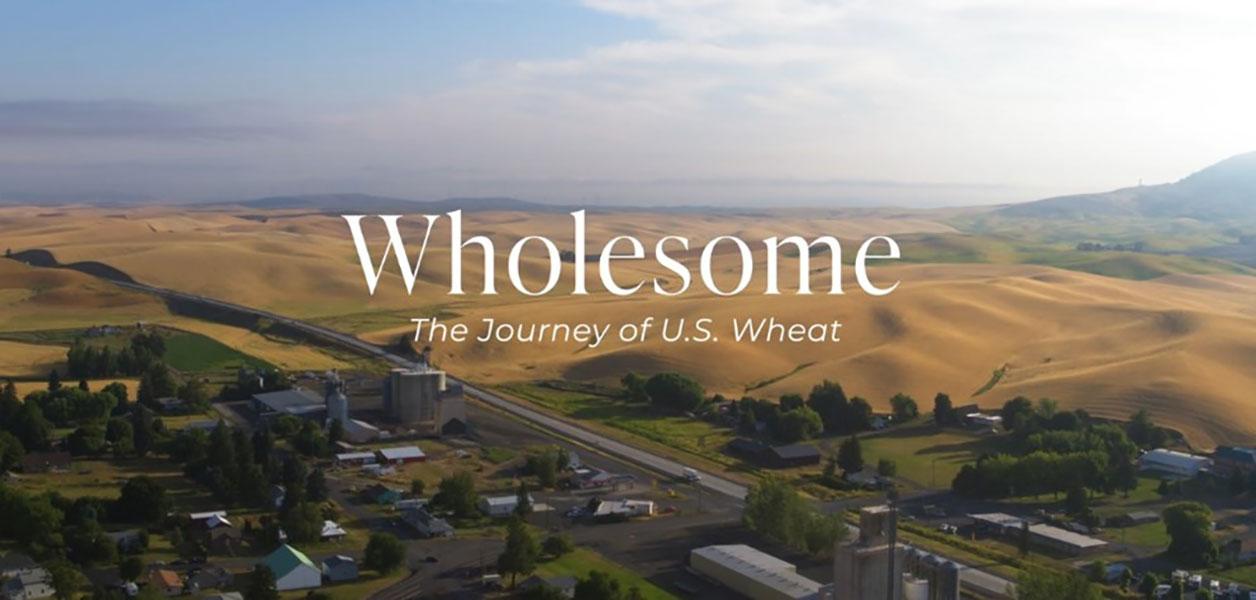 Aerial view of wheat farm land