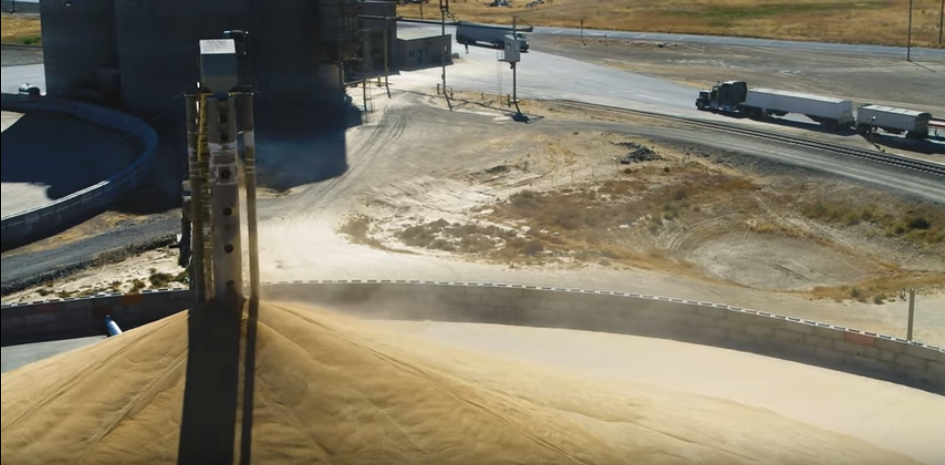 A grain truck pulls a load of wheat to a storage facility in Washington state.
